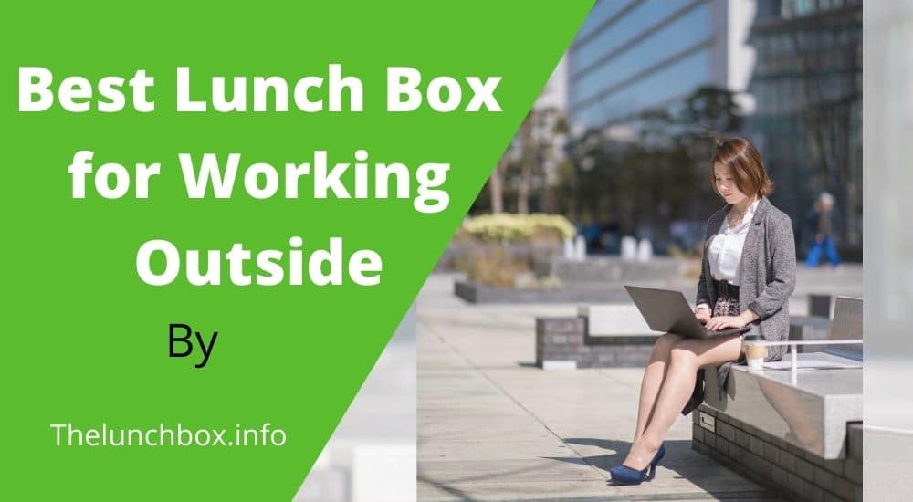 Top 04 Best Lunch Box for Working Outside reviews 2021
